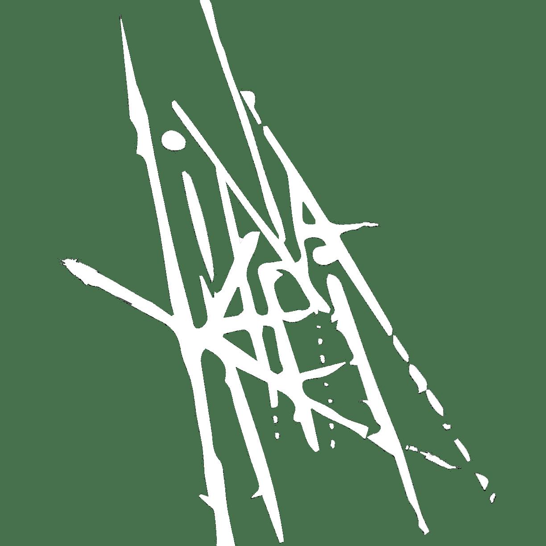 Lina khei
